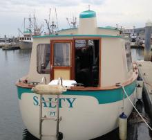 Salty stern, 2016 Rendezvous