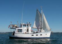 Quasar with sails